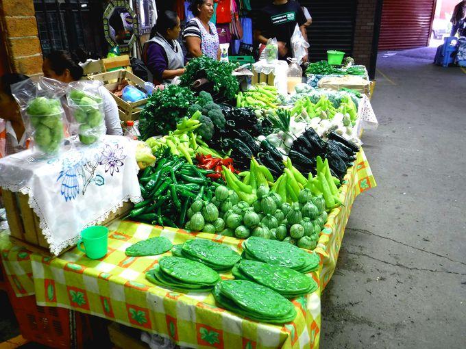 メキシコのイメージそのままにサボテンを食べてみよう!