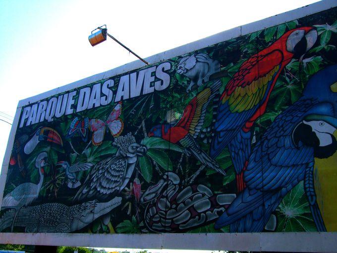 イグアス国立公園の目の前!ブラジル「鳥公園」へのアクセスは超簡単!
