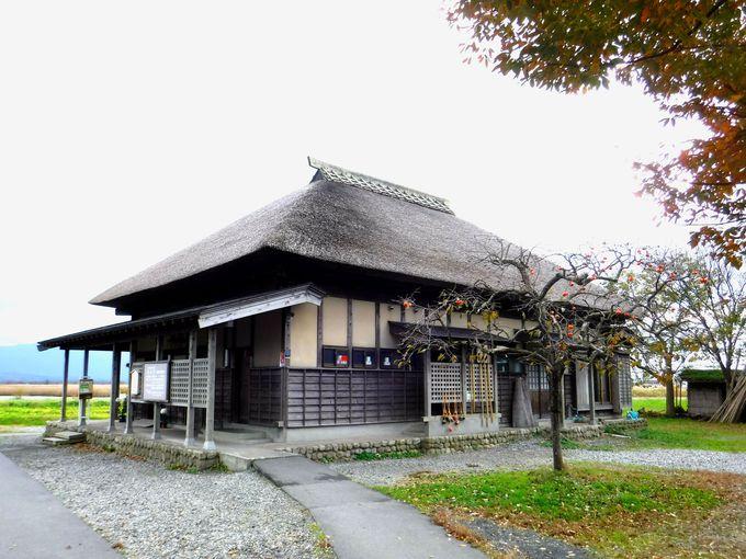 とにかく広大な干拓地「福島潟」を散策してみよう!