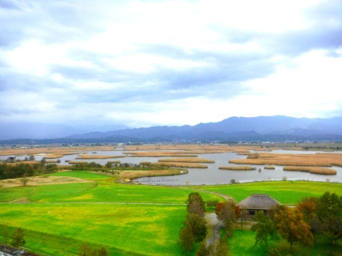 「福島潟」観光の拠点「ビュー福島潟」へ行ってみよう!
