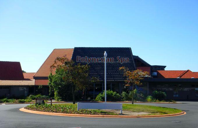 ロトルアが誇る国際的観光名所「ポリネシアン・スパ」