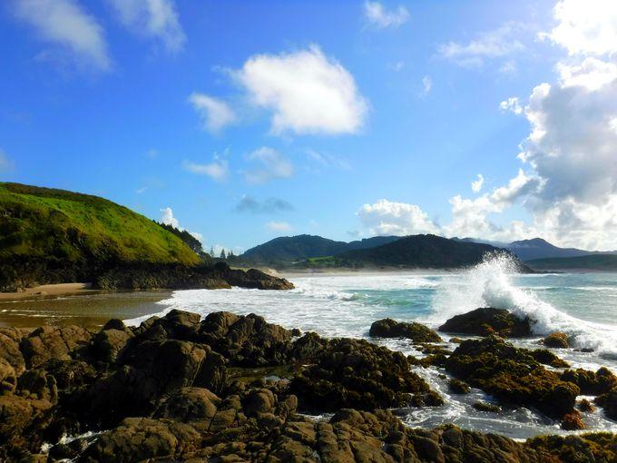 ニュージーランド屈指のビーチ!「オーシャン・ビーチ」