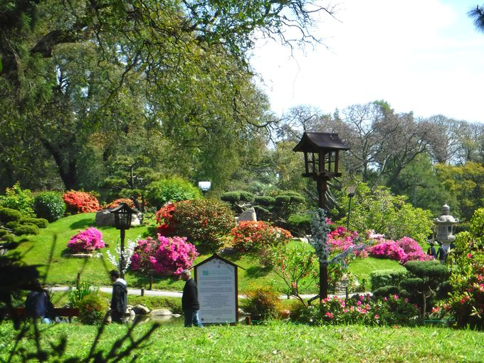 心安らぐ日本庭園「ハルディン・ハポネス」でまったりと。