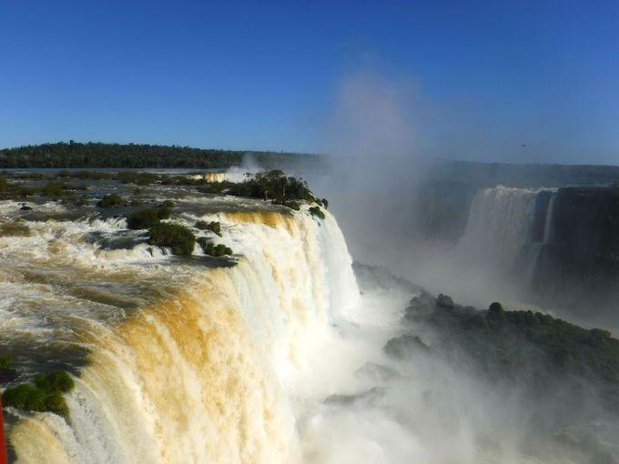 午前:イグアスの滝で大迫力を体感しよう!