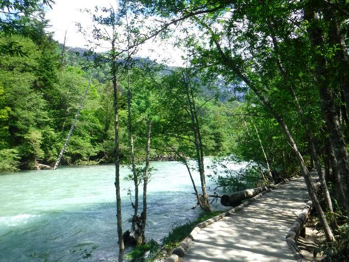 田代池から田代橋までは梓川コースと林間コースの2種類