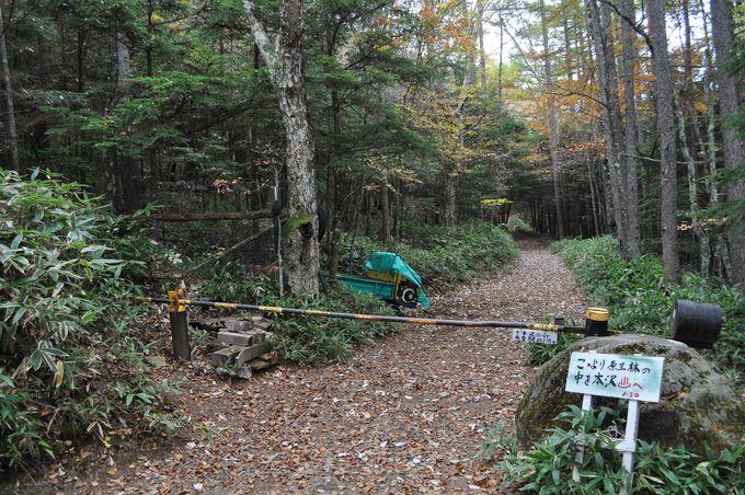 本沢温泉へは山道を