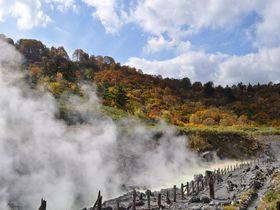 秋田・美しの紅葉と効能溢れる癒しの湯治宿「玉川温泉」