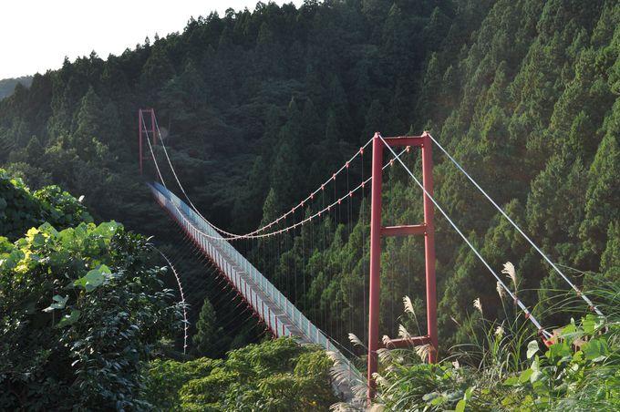 見事な千眼堂吊り橋