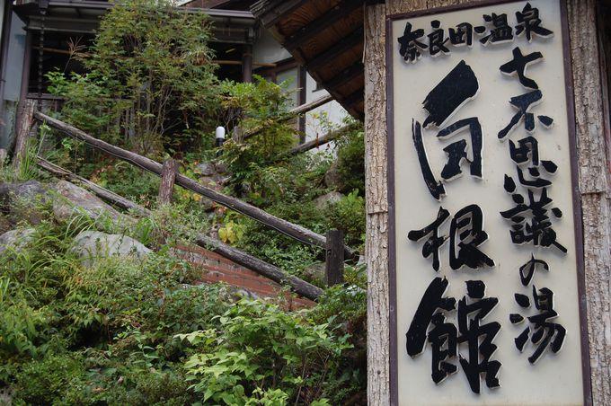 奈良田温泉の宿は七不思議?