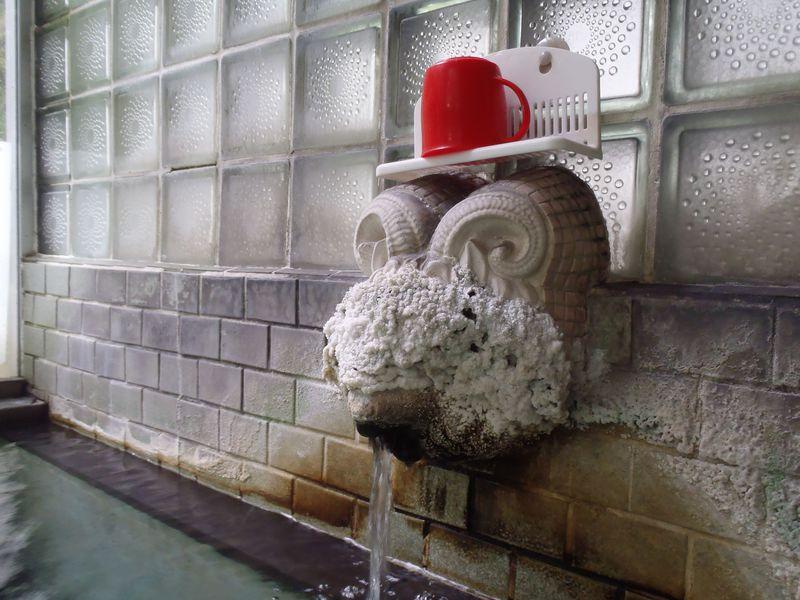 一見の価値あるコテコテ湯口!長野・鹿教湯温泉「ふぢや旅館」