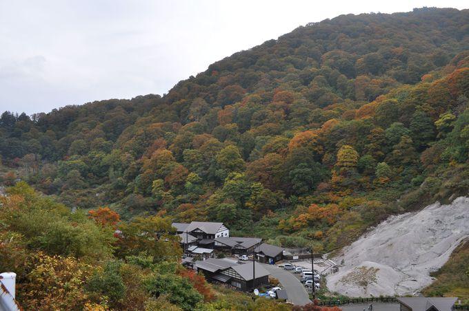 泥湯は深い山の中