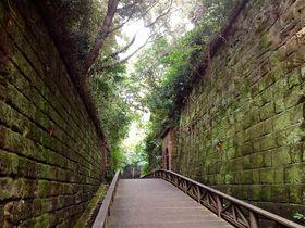 東京湾に浮かぶ唯一の無人島「猿島」でアドベンチャー体験!