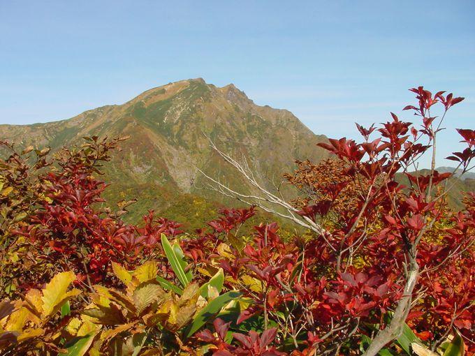 谷川岳ってどんな山?