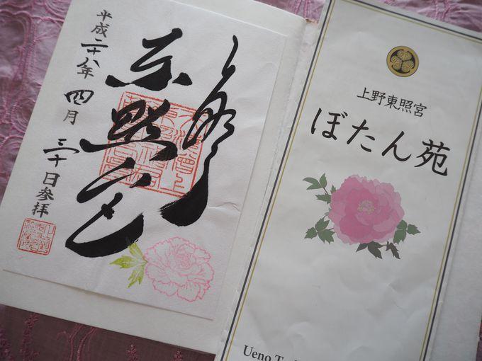 「春のぼたん祭」「上野東照宮冬ぼたん」期間中の限定御朱印
