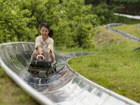 幻の花やボブスレー!新潟「湯沢高原 パノラマパーク」で高原を遊び尽くそう