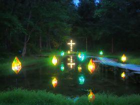 ファンタジーの世界へようこそ!花巻「童話村の森ライトアップ」が紡ぐ虹色の夢