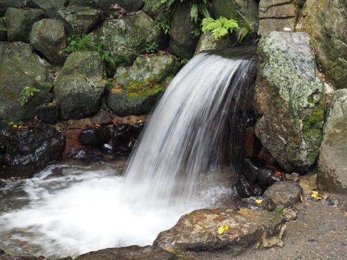 天之鈿女命をお祀りする別宮「椿岸神社」とかなえ滝