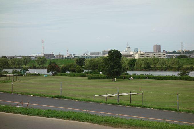 木々に隠れて「矢切の渡し」、手前の広場は昔ゴルフ場だった!