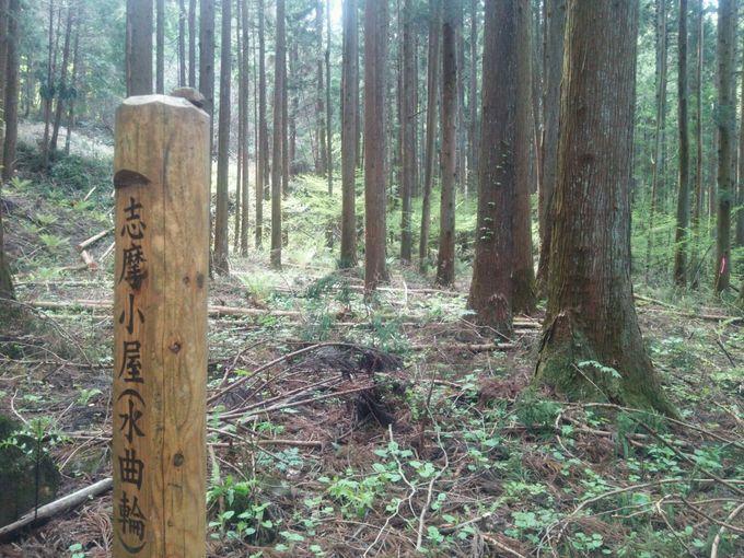 帰り道はなだらかで、下山途中にも様々な城の遺構の跡が残る