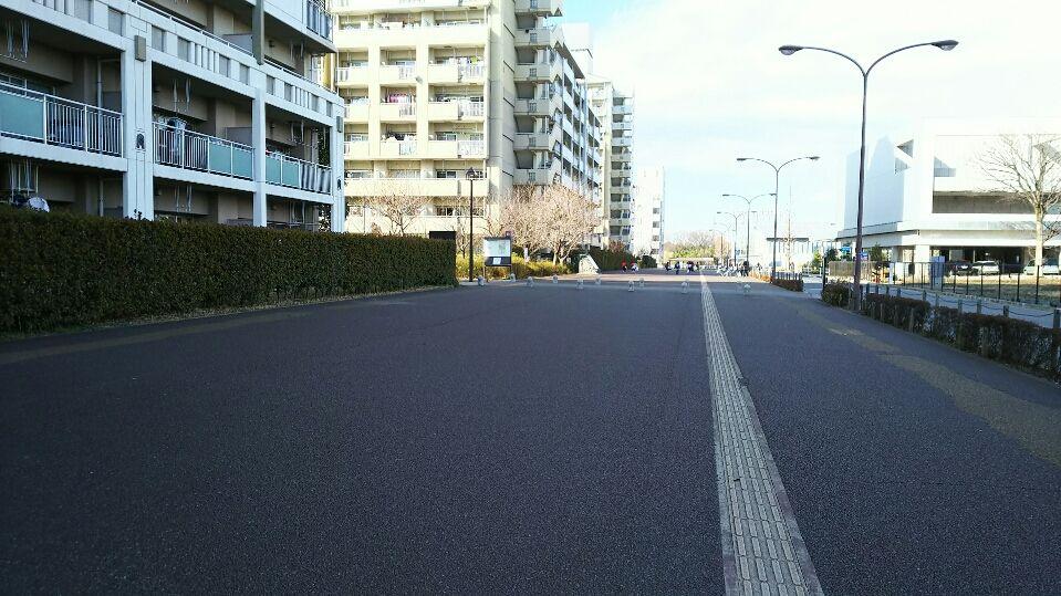 少し曲がった幅の広い直線が続く歩道には、古の幹線道路が!