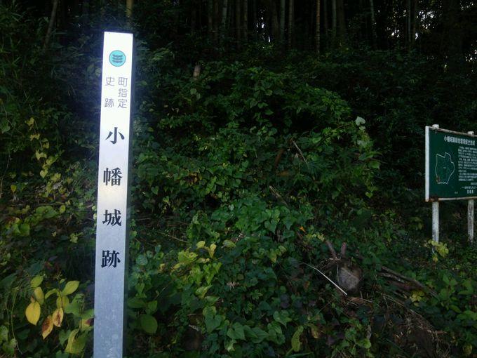 本丸跡からの帰り道は少し明るく思えても、亡霊の影が見え隠れ!