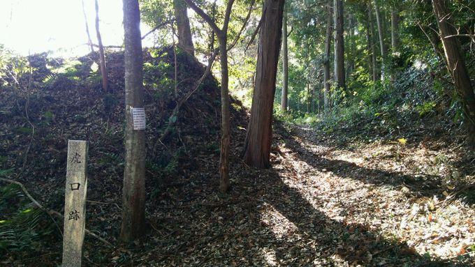 竹藪をかき分けて進むと、城の入口である虎口の跡が!