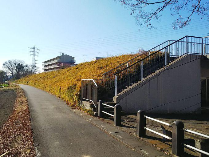 石田堤歴史公園には、ナレーション付きの歴史解説も!