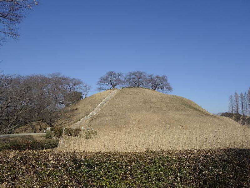 石田三成が陣を構えた丸墓山古墳に登ると遠くに忍城が!