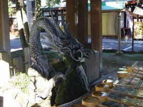 吐水龍から霊水が飲めるパワースポット!尾張一宮「真清田神社」
