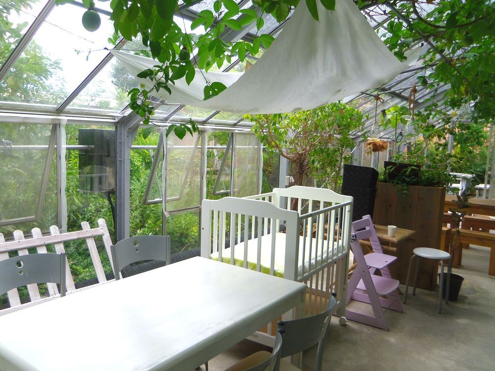 温室改造のカフェで食べるマスクメロンスイーツ