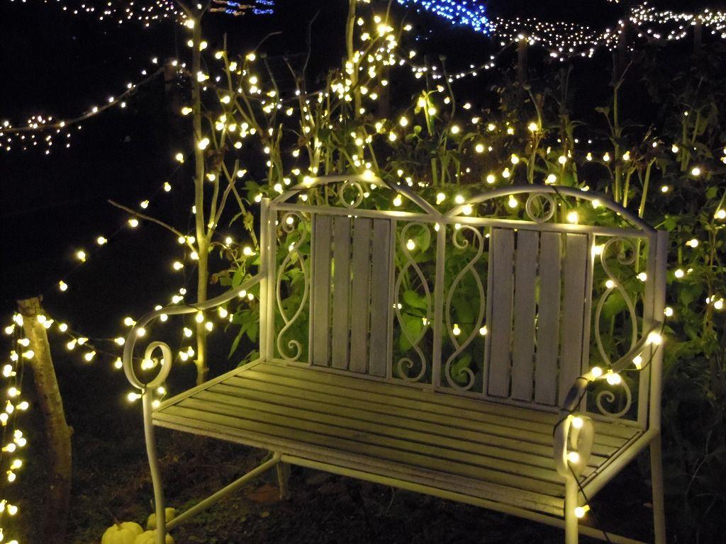 光に包まれたベンチで記念撮影