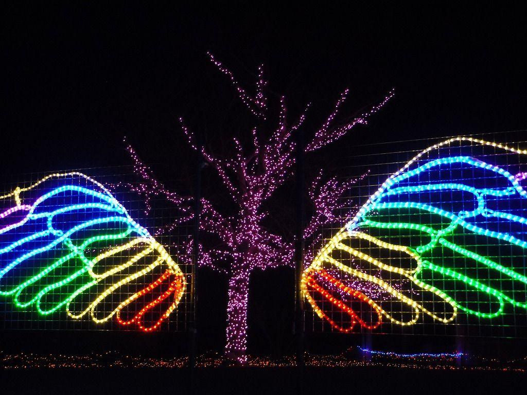 「天使の羽根」登場!フォトスポットで素敵な思い出作りを