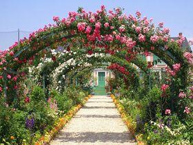 「浜名湖ガーデンパーク」花の美術館でバラの大アーチを通り抜け!
