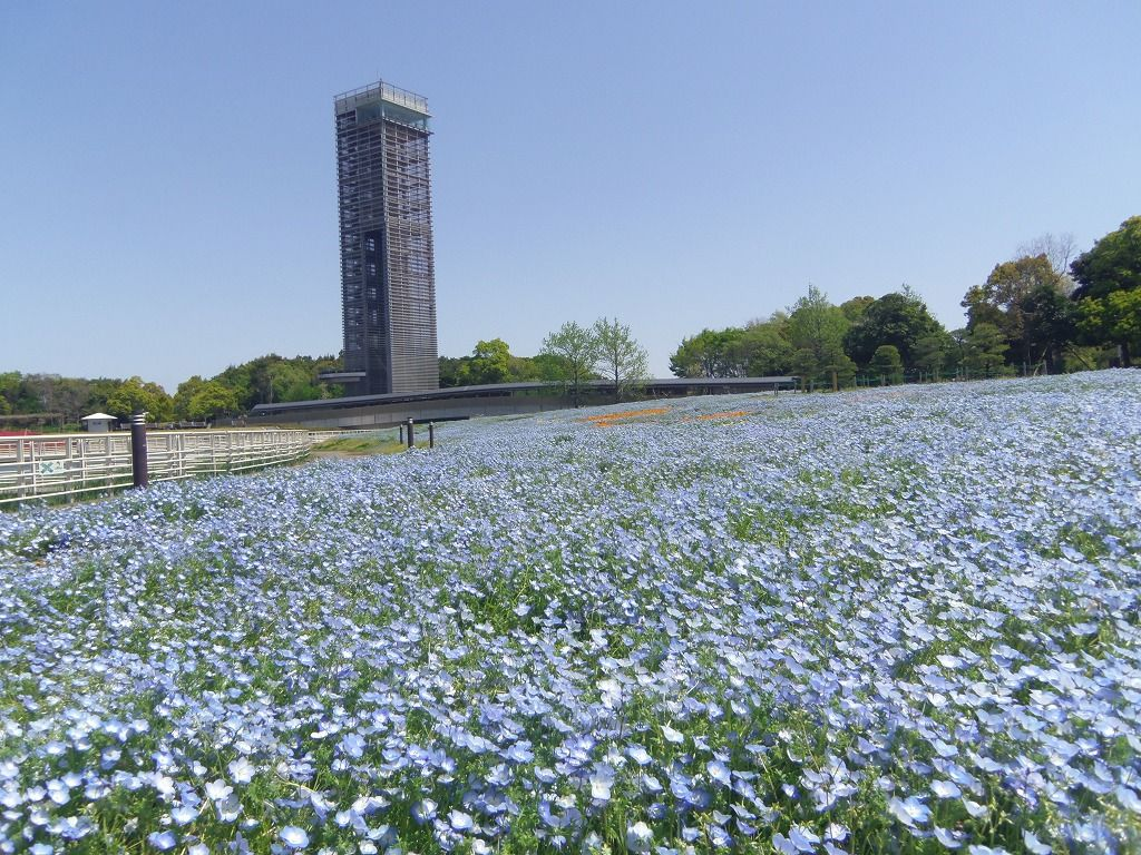 番外編:浜名湖ガーデンパーク(浜松市)
