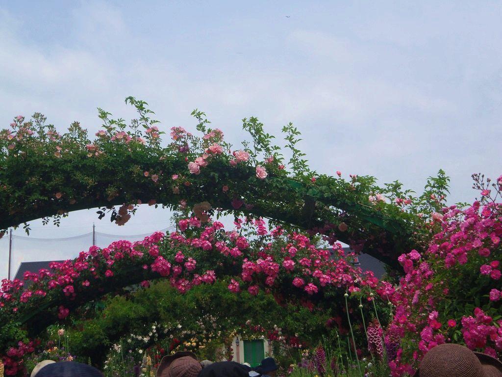花の美術館でバラ三昧を!「浜名湖ガーデンパーク」