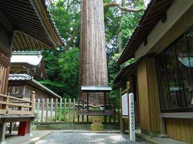 静岡県・掛川市の観光スポット7選!アート・自然・歴史を楽しむ