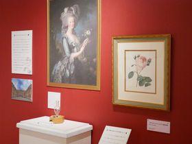 香りの世界へようこそ!静岡「磐田市香りの博物館」