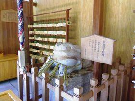 カエルに温泉、さるぼぼ!?下呂温泉でご当地神社へ参拝!