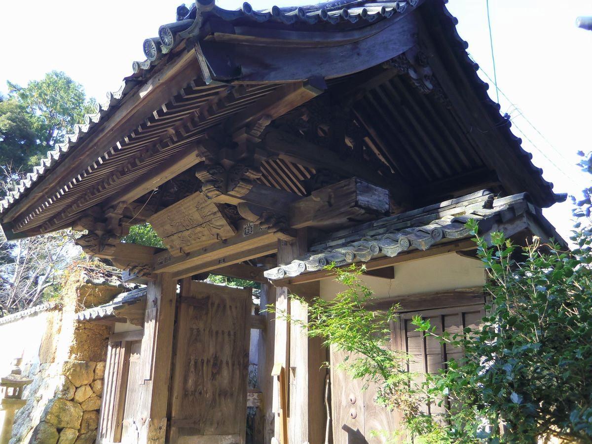 長さ100メートル!長楽寺の梅のトンネル