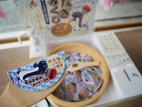 静岡西部・遠州地方の神社仏閣お城で引きたい!ご当地おみくじ4選