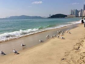 海雲台の海や市場はすぐそば!釜山「MAMA Guesthouse Haeundae」