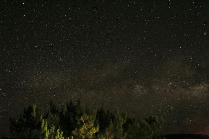 やんばるの森の上に広がる、沖縄ならではの星の輝き