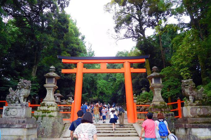 パワースポット金龍神社は世界遺産・春日大社の境内に