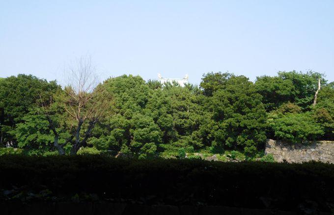 ホテルは名古屋城の真正面!すぐそこにシャチホコがひょっこりと…