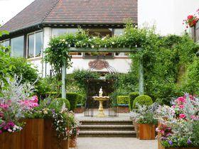 初夏は薔薇園でお茶会を。神戸布引ハーブ園 ラベンダー&ローズフェア2019