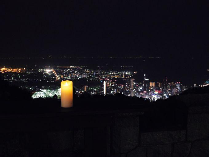 必見!「光の森〜Forest of Illuminations〜」