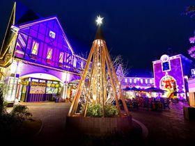 花と光で彩る聖夜「古城のクリスマス2018」神戸布引ハーブ園