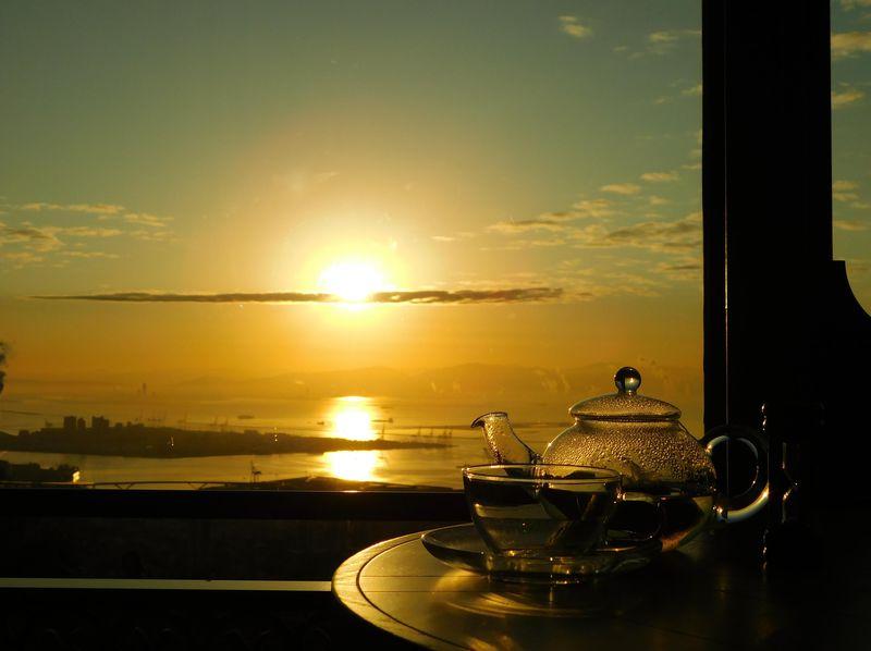 神戸の海を照らす初日の出を一望!神戸布引ハーブ園のお正月