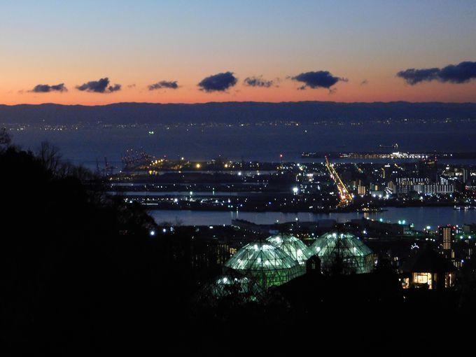 夜明け前の美しい光景も見どころ