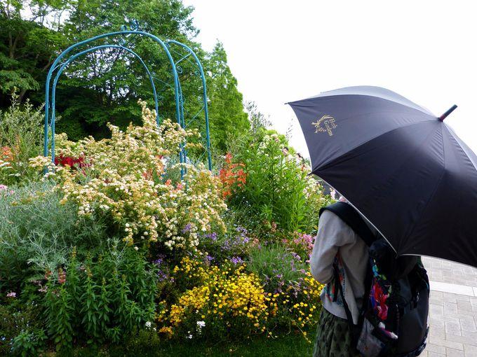 雨の日にも濡れずに行ける神戸布引ハーブ園